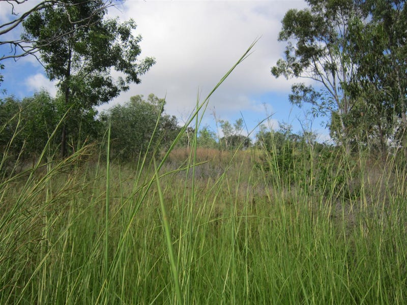 Lot 1, 24 Whitely Street, Mount Morgan, Qld 4714