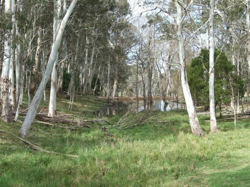 23 Sheepstation Forest Road, Gingkin, NSW 2787