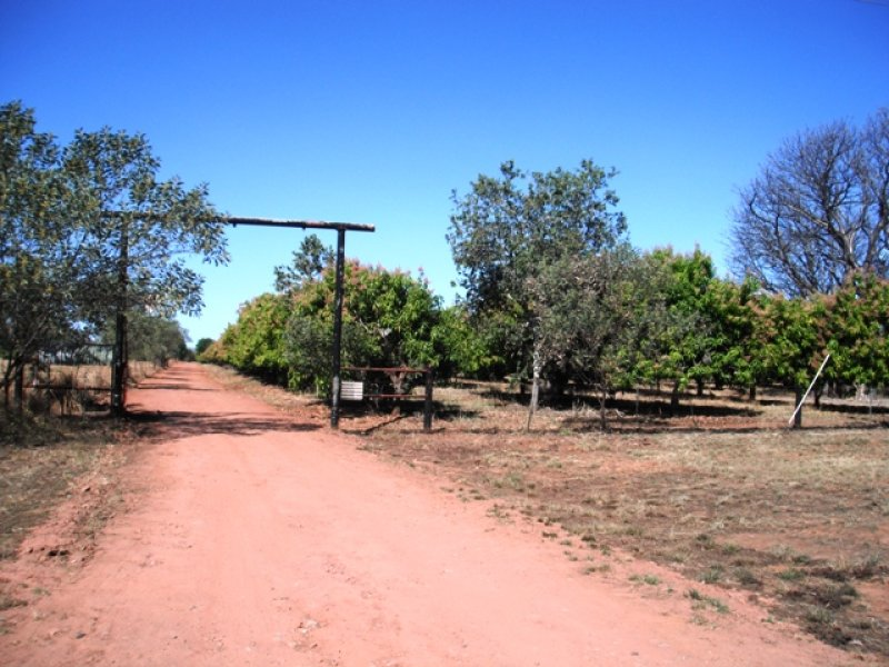 267 Packsaddle Road, Kununurra, WA 6743