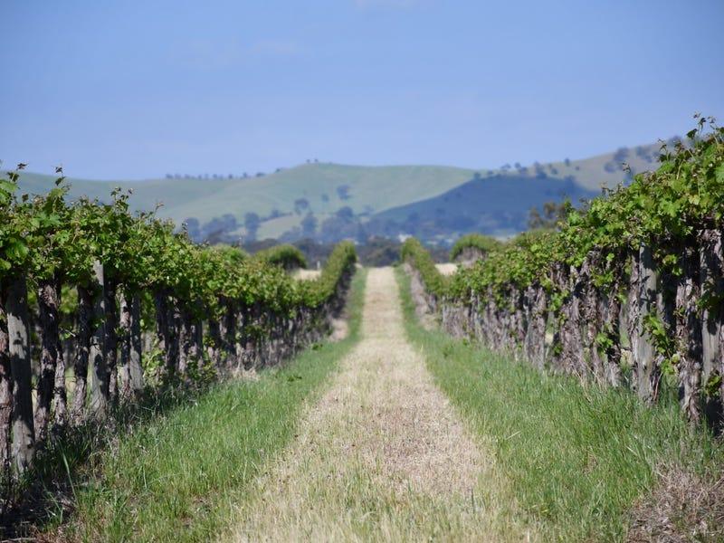 Six Gates Vineyard, 1234 Barossa Valley Way, Lyndoch, SA 5351