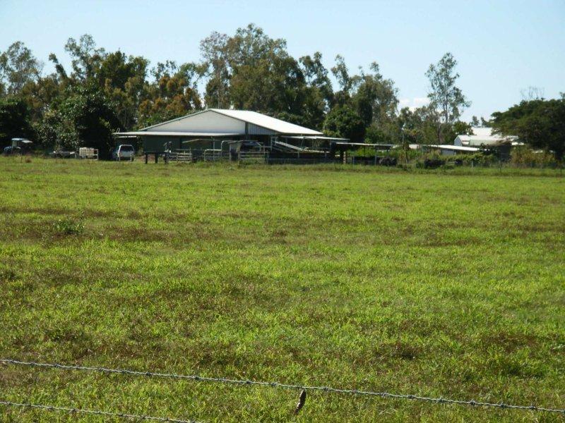 99 Lily Creek Road, Cardwell, Qld 4849