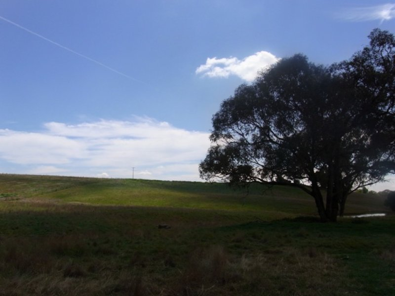 Lot 1, DP1146021 Hollands Road, Young, NSW 2594