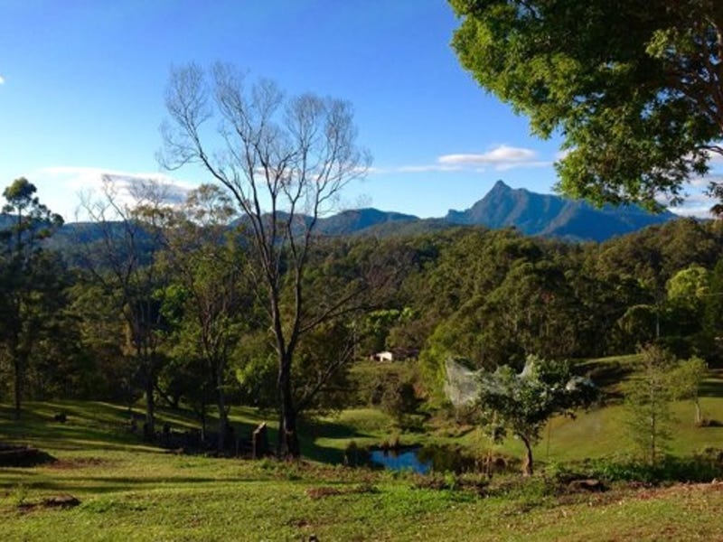 52 Bald Mountain, Limpinwood, NSW 2484