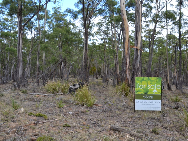 Lot 32 Mulcahys Road, Apollo Bay, Tas 7150