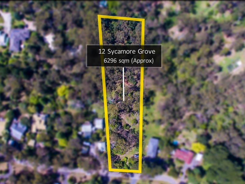 12 Sycamore Grove, Mount Evelyn, Vic 3796