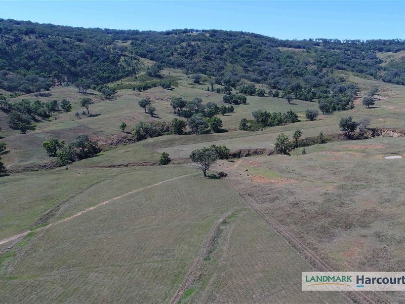 438 Riverstone Road, Upper Horton, NSW 2347