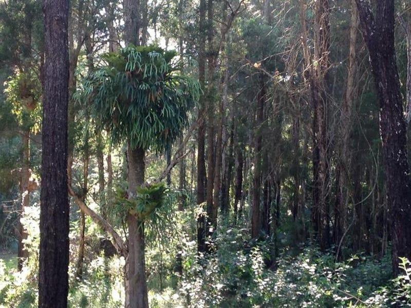 Lot 63 Locketts Crossing Road, Coolongolook, NSW 2423