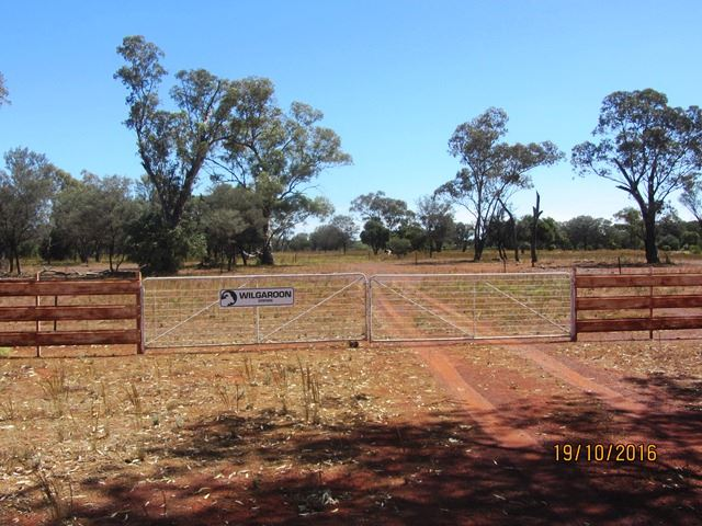 * West Wilgaroon, Cobar, NSW 2835