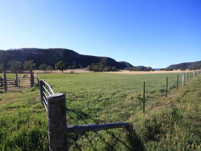 Lot 1 Giants Creek Road, Sandy Hollow, NSW 2333