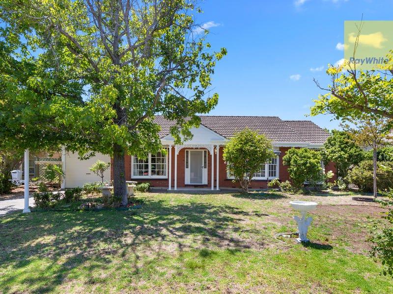 23 Windermere Avenue, Novar Gardens, SA 5040