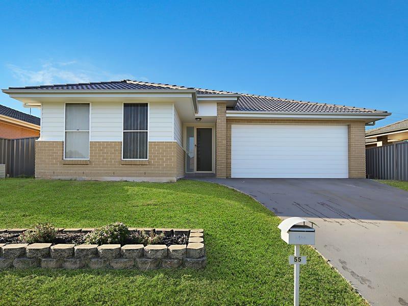 55 Kelman Drive, Cliftleigh, NSW 2321