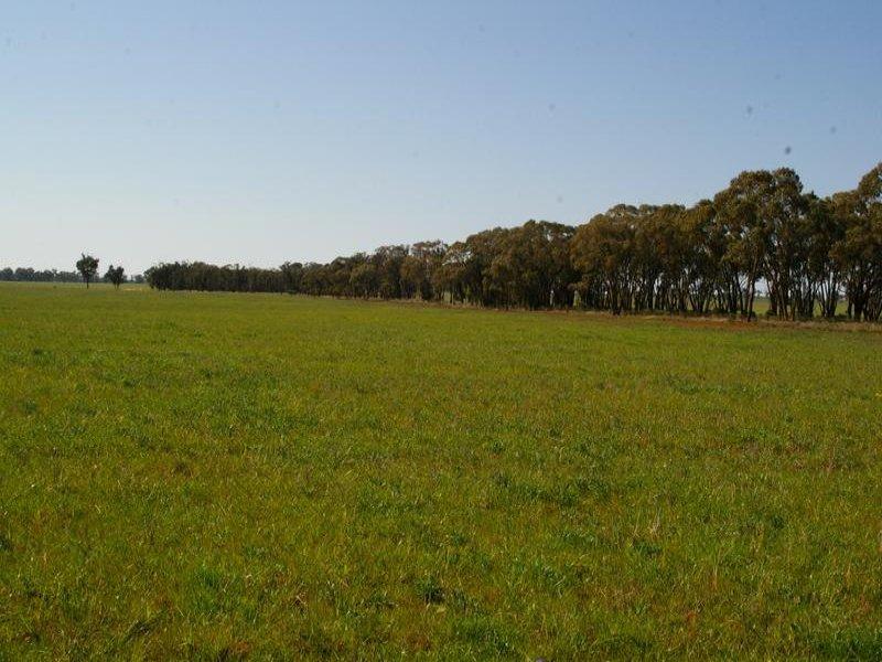 TALLEEBAN ROAD, Weethalle, NSW 2669