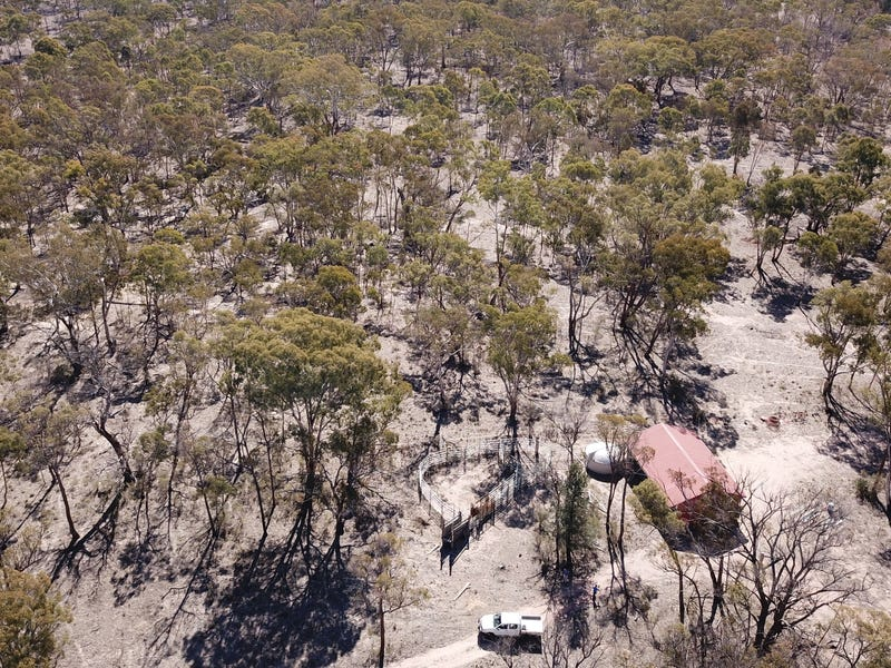 390 Gwydir River Road, Armidale, NSW 2350