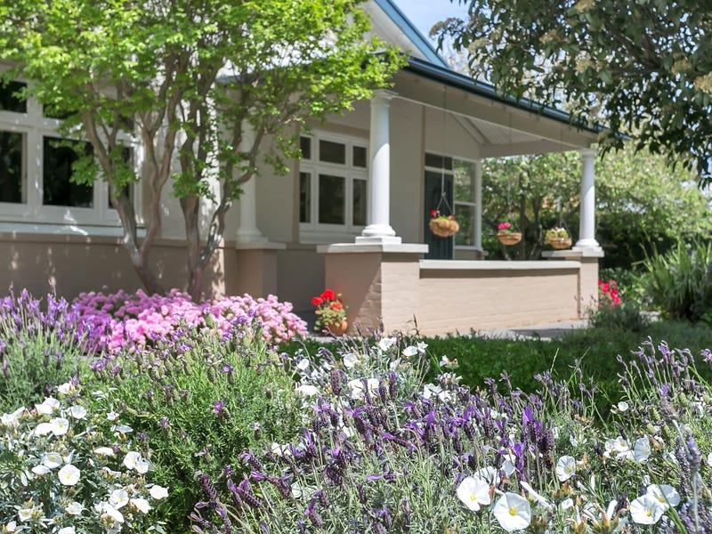 16 Elmo Avenue, Westbourne Park, SA 5041