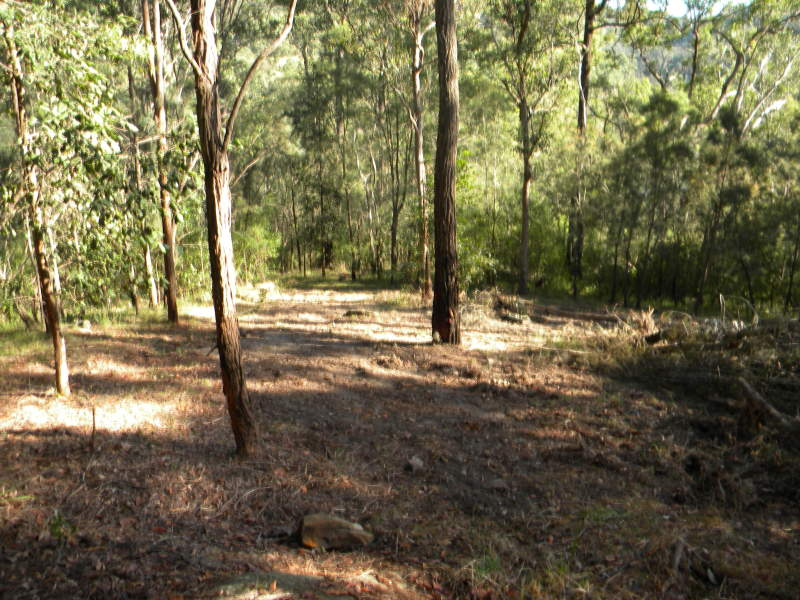 Address available on request, Lower Mangrove, NSW 2250