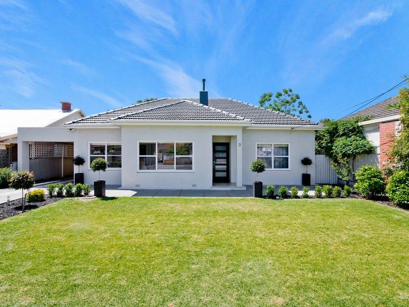 3 Allen Terrace, Glenelg East, SA 5045