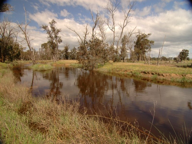 Lot Norrish Road, Kojonup, WA 6395