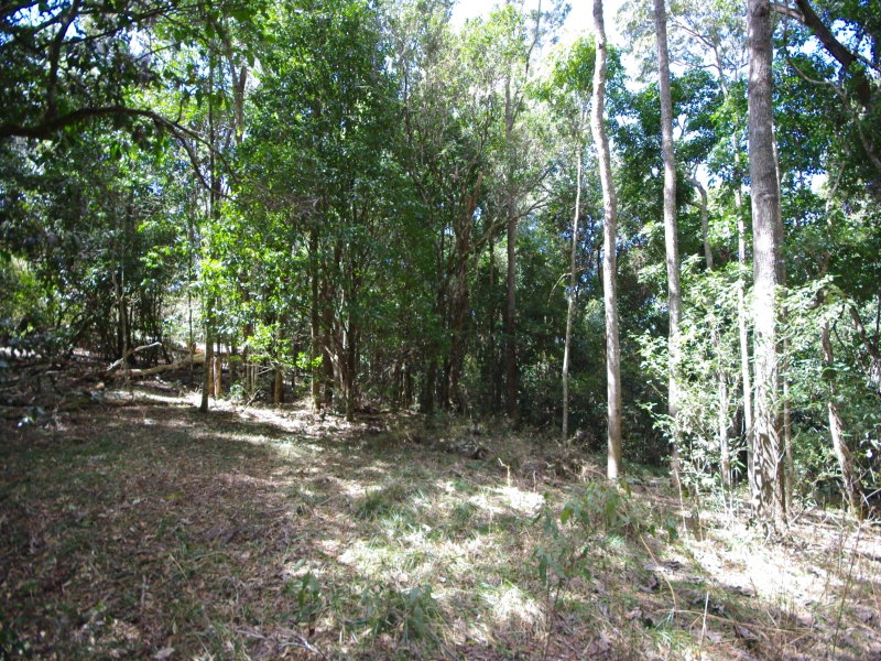 Lot 18, Lamington National Park Road, Cainbable, Qld 4285
