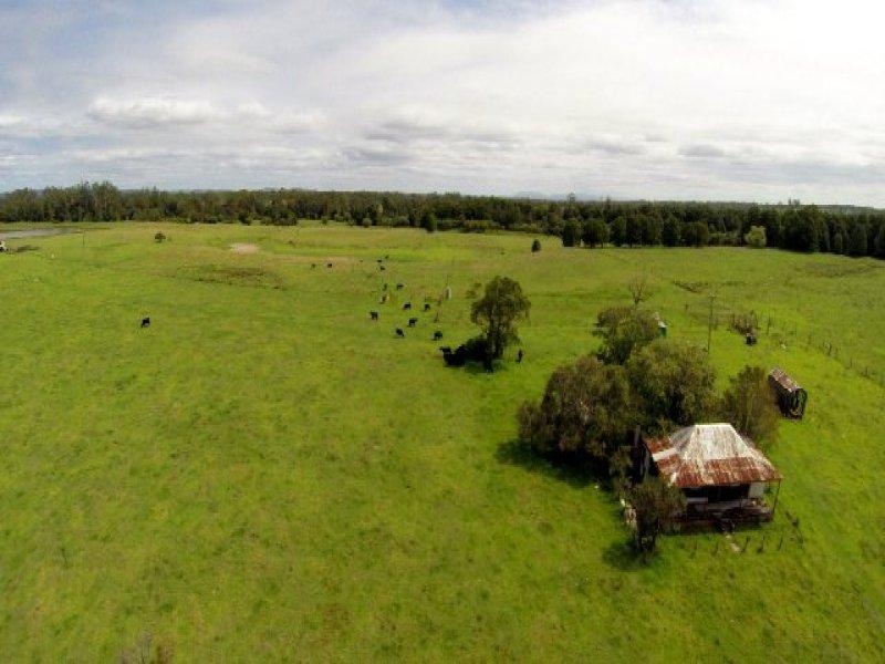 228 Mulquinneys Road, Braunstone, NSW 2460