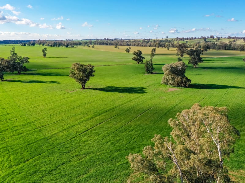 780 Spurrells Rd, Pleasant Hills, NSW 2658