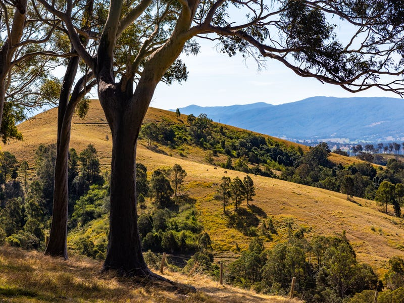 120, 235 Myall Creek Road, Munni Via, Dungog, NSW 2420