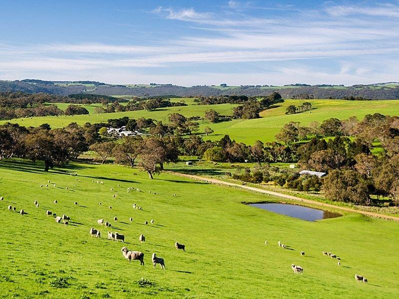 . Dairy Flat Rd, Hay Flat, SA 5204