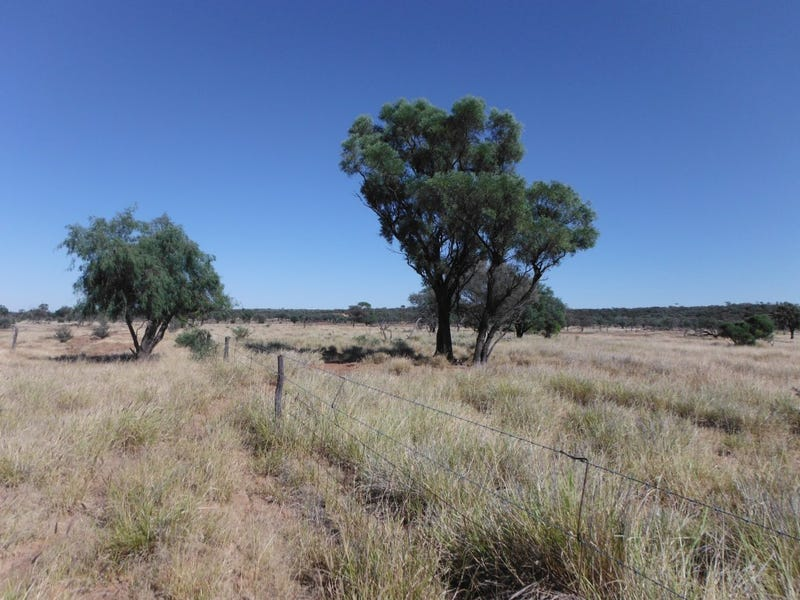 ' Maybe', Quilpie, Qld 4480