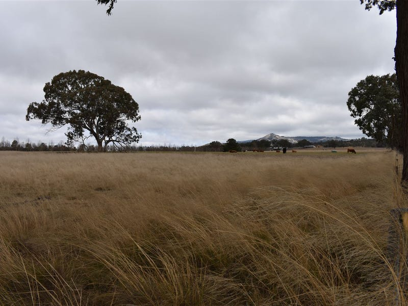 89 Haddocks Road, Tenterfield, NSW 2372