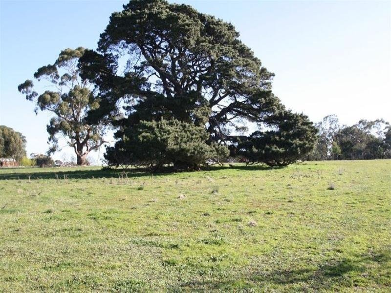 Lot 2 Thompsons Road, Tarrington, Vic 3301