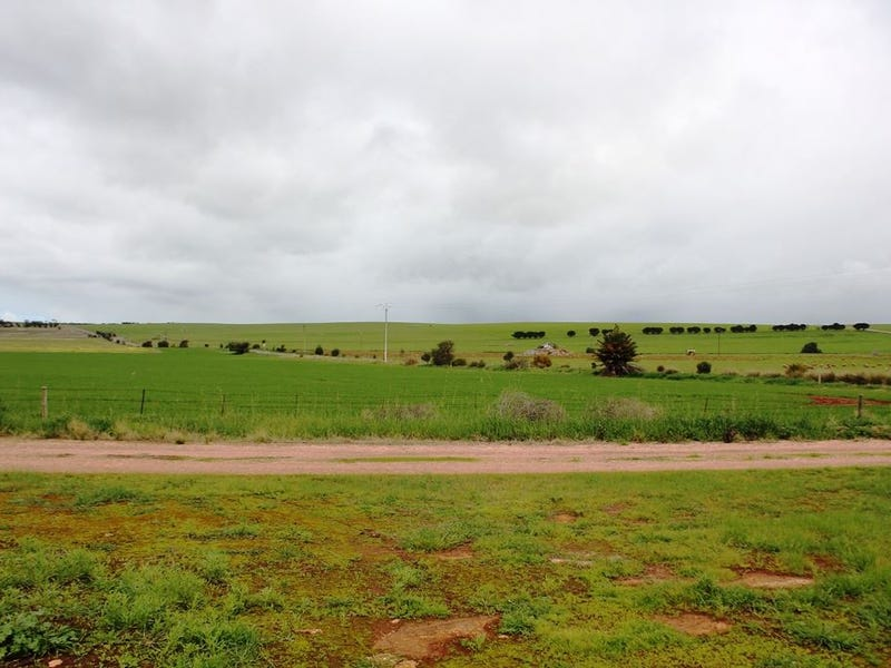 Lot 169 South Terrace, Curramulka, SA 5580