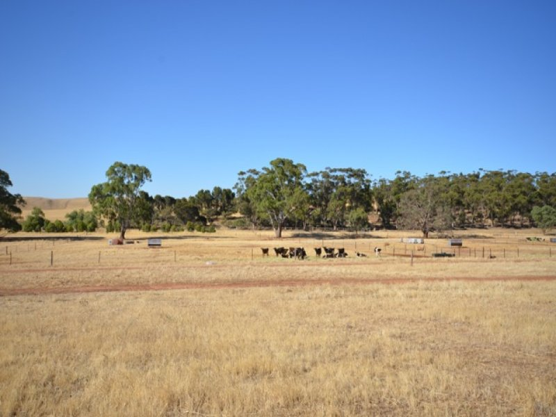 2 Lots Leighton Road, Leighton, SA 5417