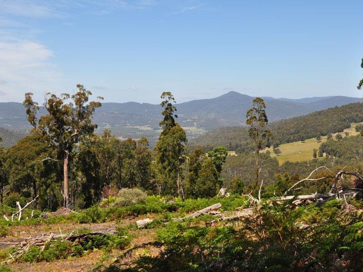 Lot 1 Bygraves Road, Crabtree, Tas 7109