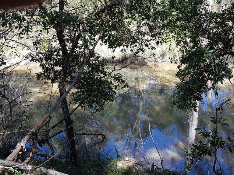 7041 Summerland Way, Myrtle Creek, NSW 2469