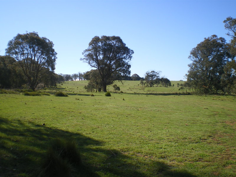 Lot 13, Dry Plains Road, Dry Plain, NSW 2630