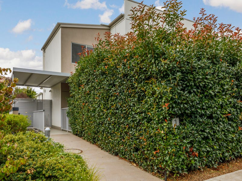 1/4 Hay Street, O'Connor, ACT 2602