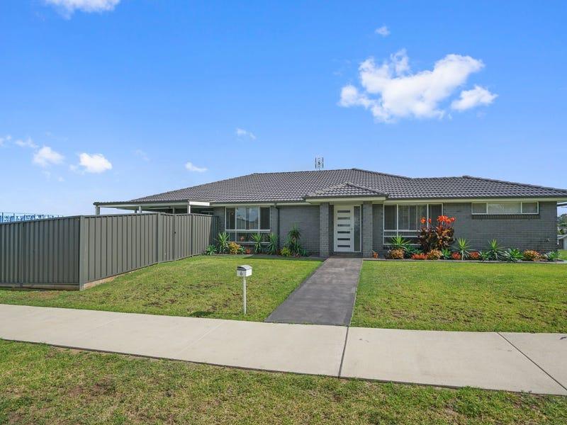 6 Pandanus Circuit, Bolwarra, NSW 2320