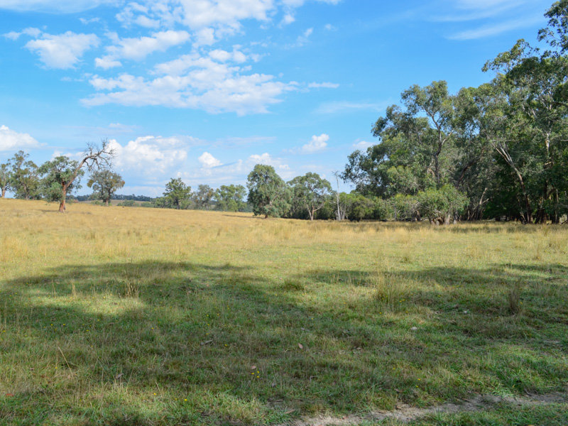 510 Sheepstation Creek Road, Yellingbo, Vic 3139