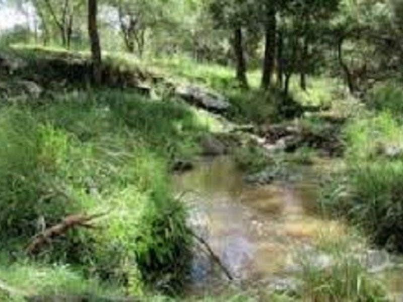 Lot 11 Leslie Creek Road, Drake, NSW 2469
