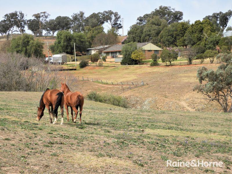 1598 GEEGULLALONG ROAD, Murringo, NSW 2586