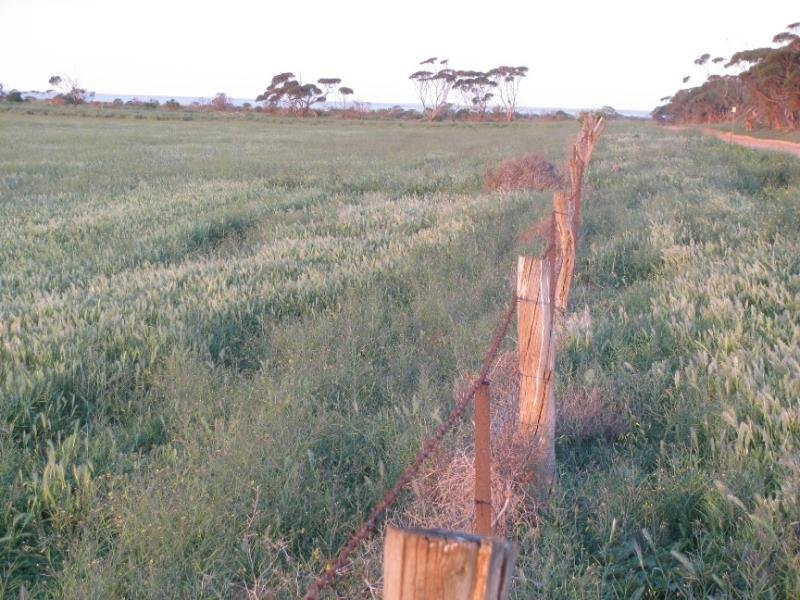 Section 34 Hundred of Hawker, Starr Road, Cowell, SA 5602