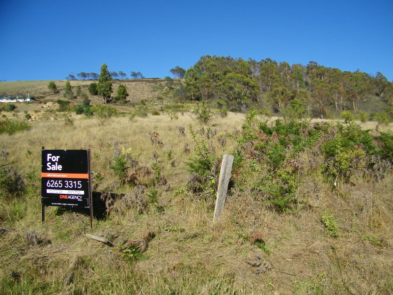 Lot 5 Rhyndaston Road, Rhyndaston, Tas 7120