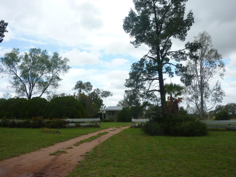 498 Castlereagh Highway, Gilgandra, NSW 2827