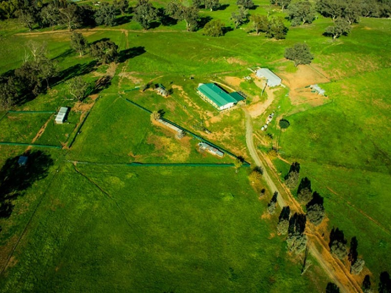 190 Turners Lane, Cootamundra, NSW 2590