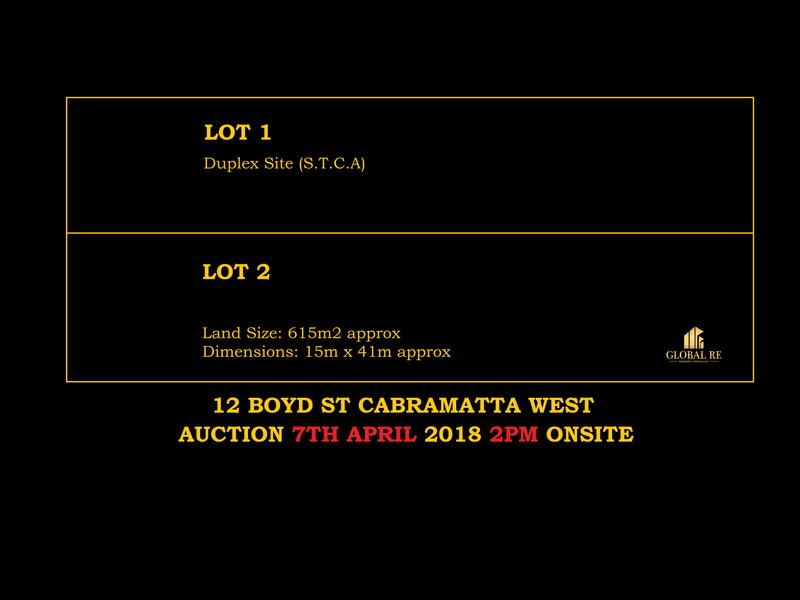 12 Boyd Street, Cabramatta West, NSW 2166