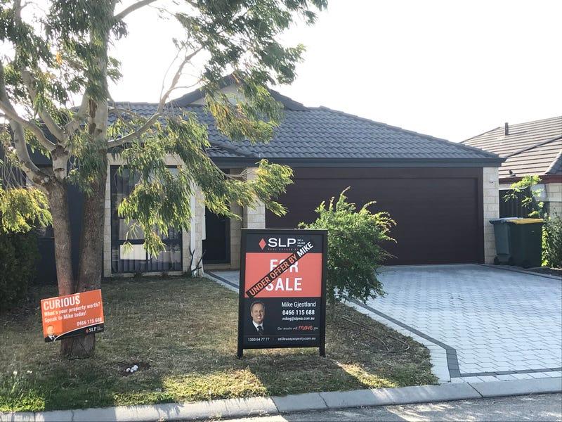 8 Boldwood Road, Banksia Grove, WA 6031