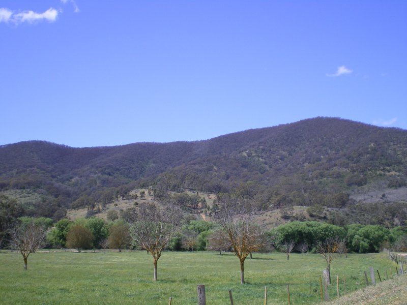 Old Omeo Road, Dargo, Vic 3862