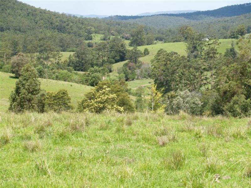 Blk 3/164 Sharkeys Road, Bellangry, NSW 2446