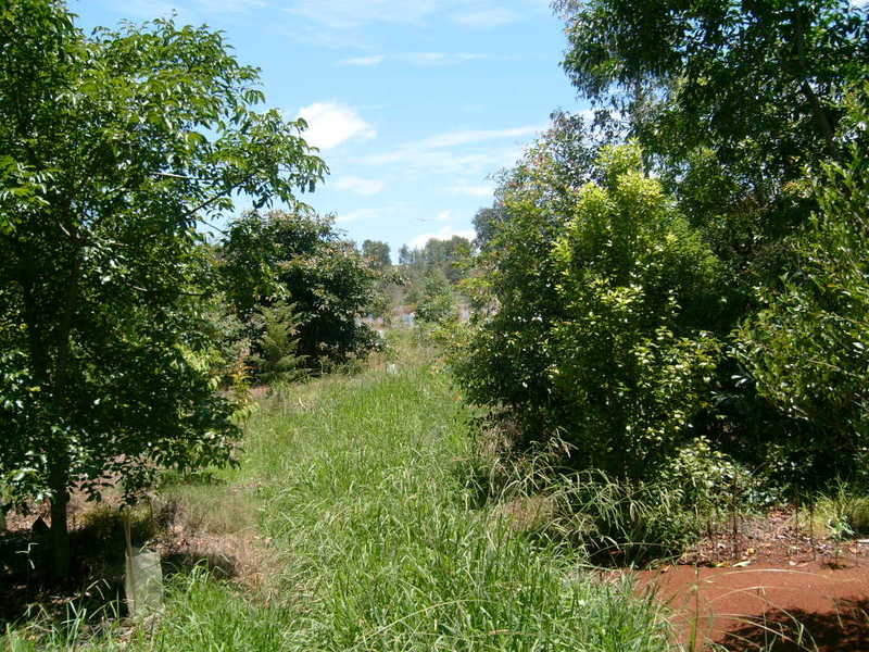 LOT 3 Gorries Road, Doolbi, Qld 4660