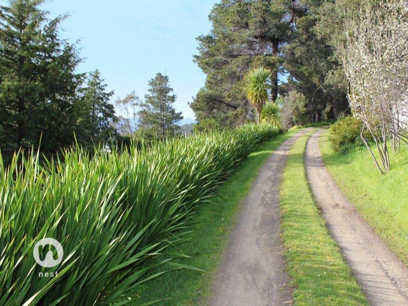 1424 Cygnet Coast Road, Glaziers Bay, Tas 7109