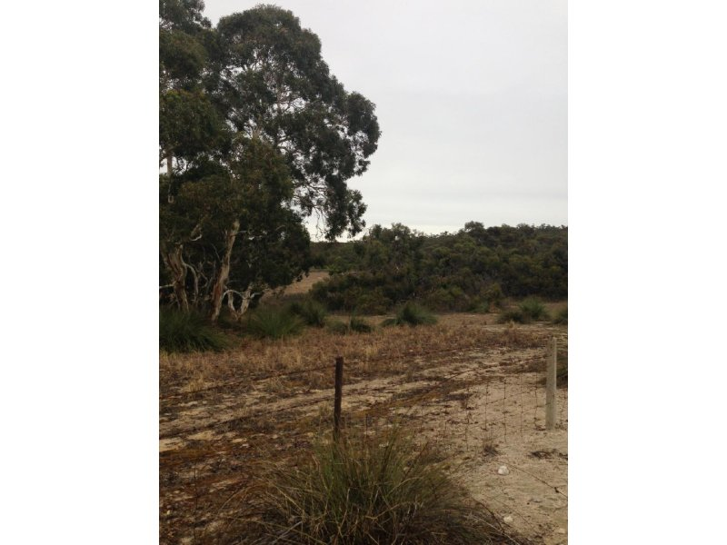 Lot 50 Moeller Road, Coombe, SA 5267